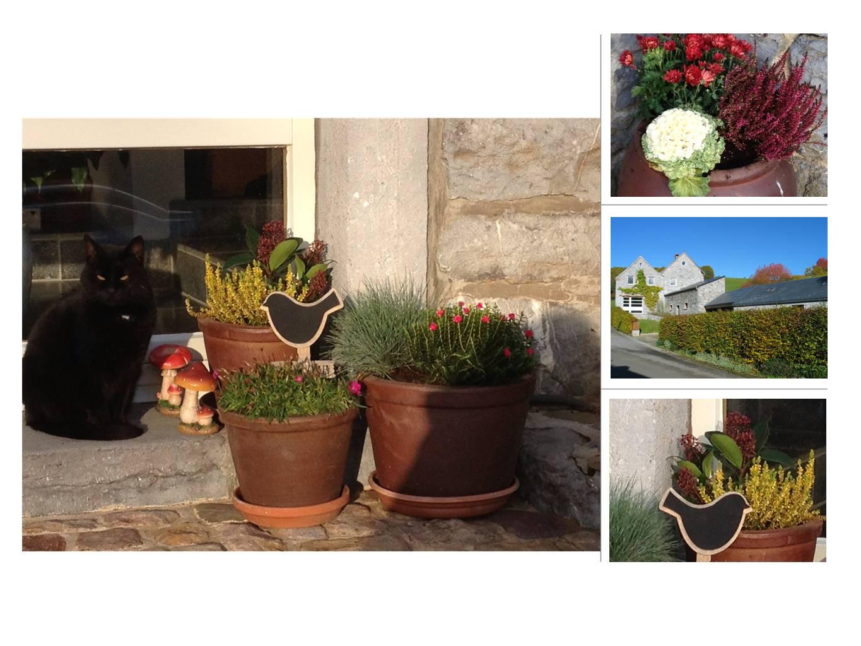 Pelle-mêle photo représentant l'entrée du gîte et le fleurissement en fonction des saisons